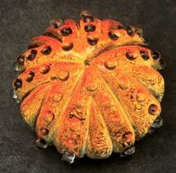 marco jerman sea urchin glass